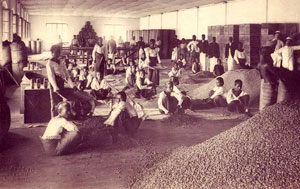OLD-ceylon-tea-industry-7